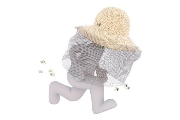Curar picaduras de avispas y abejas. Métodos para calmar las picaduras de insectos.