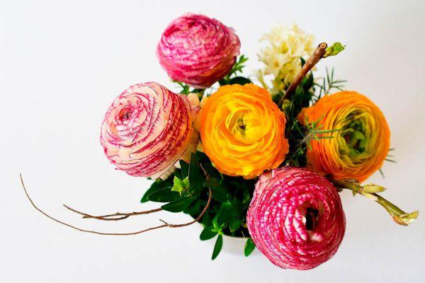 Flores de distintos tonos coloreadas