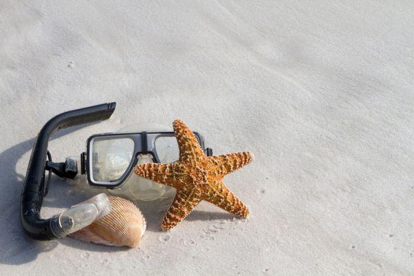 Cómo ambientar una habitación al estilo playa. Ideas para hacer una habitación de playa en casa. Una habitación como si fuera una playa