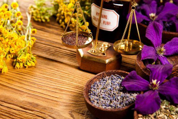Usos de las plantas medicinales en tratamientos de belleza y salud. Usos y propiedades de las plantas medicinales más populares.