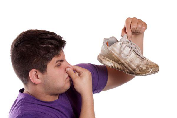 Claves para eliminar el mal aroma dentro del hogar en invierno. Cómo evitar el mal olor del invierno. Tips para ventilar y quitar el olor a encierro