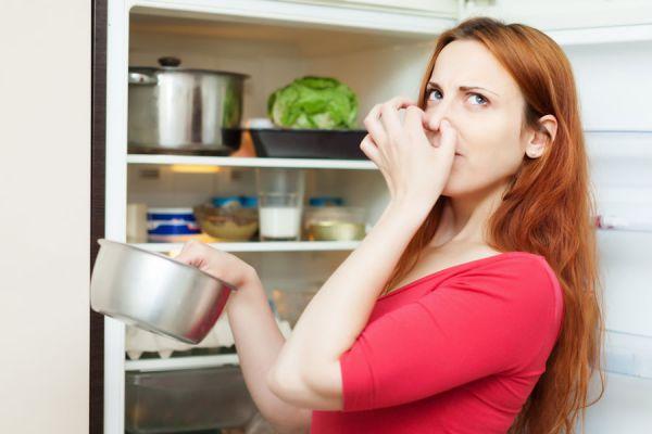 Cómo aprender a usar el refrigerador. Claves para conservar los alimentos en la nevera. Guía para usar correctamente el refrigerador