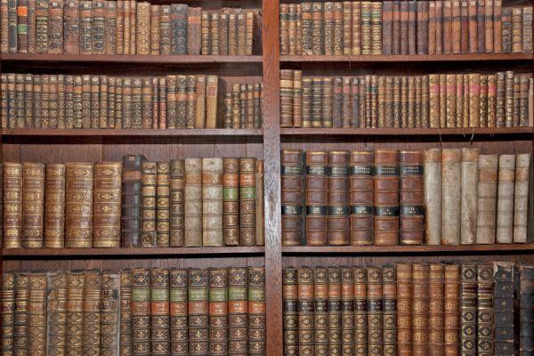Bibliotecas online gratis con ebooks. Cómo leer libros digitales para estudiantes. Bibliotecas virtuales con libros gratis.