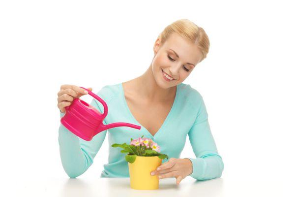 Claves para fertilizar las plantas. Aprende cómo usar los fertilizantes. Cómo abonar las plantas del jardín. Uso del abono casero y mineral