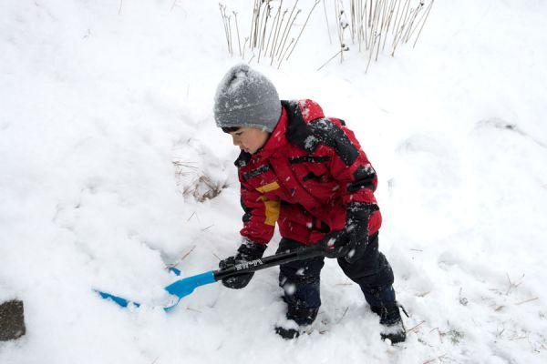 Procedimiento para palear nieve. Cómo palear la nieve acumulada. Tips para retirar la nieve acumulada