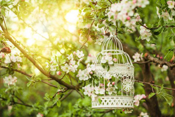 Cómo decorar con jaulas vacías. Tips para hacer jaulas decorativas sin aves. Cómo aprovechar las jaulas vacías en la decoración