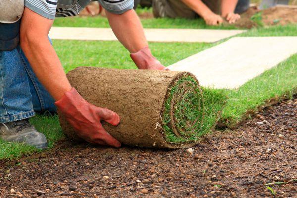 Cómo hacer jardinería lasaña en el jardín. Diseños de jardinería lasaña. Cómo hacer jardinería lasaña en macetas.
