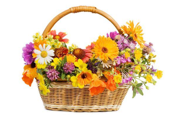 Cómo hacer canastas de regalo personalizadas. Tips para crear cestas de regalo. Cómo regalar cestas personalizadas.