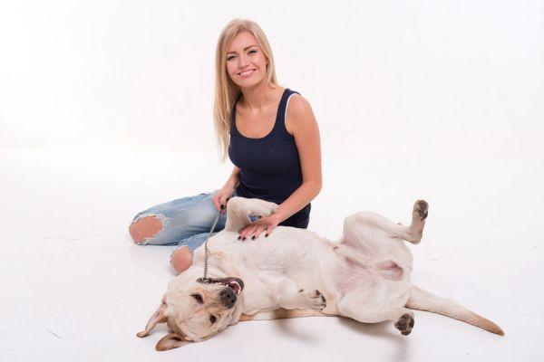 Cómo hacer que el perro engorde. Guía para alimentar a un perro desnutrido. Mejorar la alimentación de un perro.