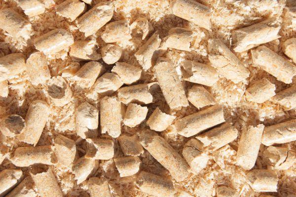 Cómo aprovechar la arena para gatos. Tips para reutilizar las piedritas sanitarias para gatos. Ideas útiles para hacer con arena para gatos