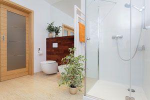 Cómo decorar el baño con plantas
