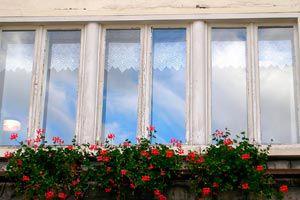 Ilustración de Consejo para limpiar los vidrios de las ventanas