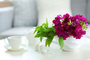 Tips para que las flores del florero duren mas tiempo. Cómo conservar las flores en un florero.