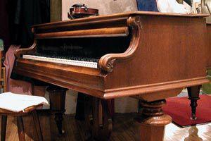Ilustración de Cómo cuidar el piano de las polillas