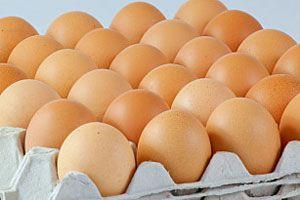 Ilustración de Cómo congelar huevos