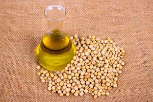 Ilustración de Cómo utilizar el aceite de soja