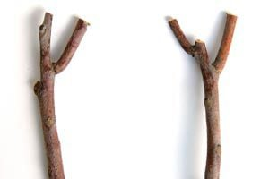 Cómo armar un perchero con una rama
