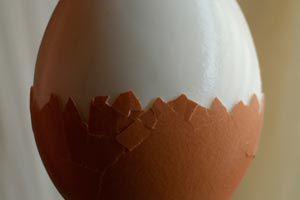 Ilustración de Cómo Cocinar Huevos Duros