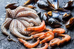 Ilustración de Cómo conservar los moluscos