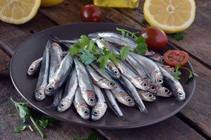 Ilustración de Cómo hacer anchoas en salmuera
