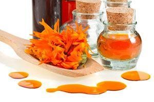 Ilustración de Cómo preparar Té, Aceite y Crema de Caléndula