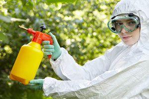 Ilustración de Cómo Preparar Insecticidas Caseros