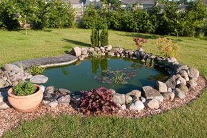 Ilustración de Cómo construir un estanque para peces