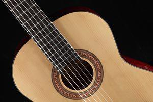 Ilustración de Cómo elegir tu primer guitarra