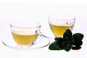 Ilustración de Cómo preparar el té de menta poleo