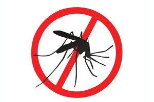 Ilustración de Cómo prevenir el dengue