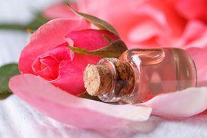 Ilustración de Cómo hacer Agua de Rosas