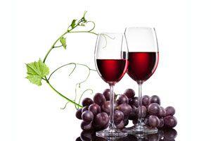 Ilustración de Cómo es el proceso de Fabricación del Vino Tinto