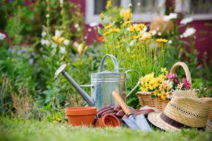 Ilustración de Consejos simples para mantener un jardín