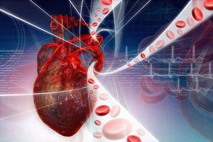 Ilustración de Cómo mejorar el sistema circulatorio con simples hábitos