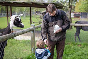 Ilustración de Cómo comportarse en una visita al zoológico