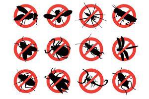 Ilustración de Cómo ahuyentar a los insectos