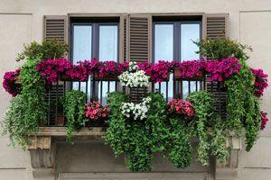 Ilustración de Cómo hacer un jardín en la terraza o balcón