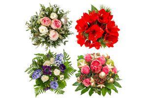 Ilustración de Cómo decorar con plantas y flores en Navidad
