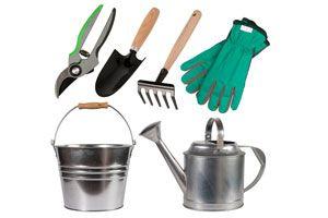 Ilustración de Cómo prevenir accidentes en las tareas de jardinería