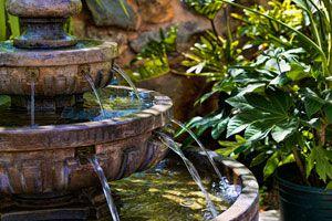 Cómo elegir una fuente de agua