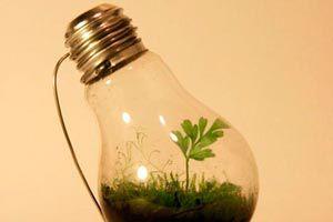 Ilustración de Cómo hacer un Jardín en miniatura dentro de una Bombilla de Luz
