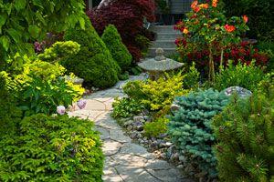 Cómo diseñar un jardín según el clima y el terreno