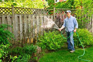 Cómo regar el jardín según el estado del terreno y las plantas