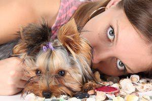 Cómo combatir alergias relacionadas a las mascotas