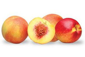 Ilustración de Cómo Deshidratar Frutas y Frutos con Carozo