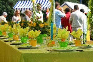 Ilustración de Cómo Organizar una Fiesta en el Jardín