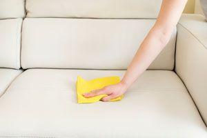 Ilustración de Cómo Limpiar el Cuero