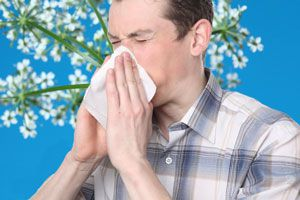 Ilustración de Alimentos para evitar las alergias de primavera