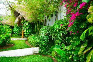 Ilustración de Cómo preparar el jardín para el verano