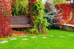 Ilustración de Cómo mejorar el jardín durante el otoño